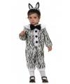 Dieren baby pakje zebra