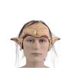 Carnavals masker van een elf