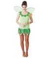 Fee kostuum groen voor dames