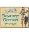Metalen platen Domestic Goddess