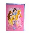 Princess verjaardagskaart 26 cm