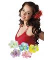 Hawaii bloemen clipje