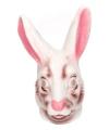 Masker van een konijn
