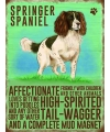 Metalen plaat Springer Spaniel
