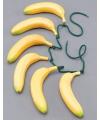 Inboorling riem met bananen