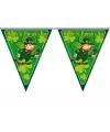 Feestartikelen vlaggenlijn St. Patricks Day