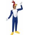 Vogel kostuums volwassenen
